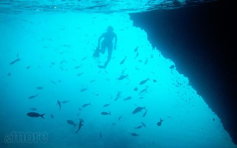 Landscape_Underwater_H.jpg