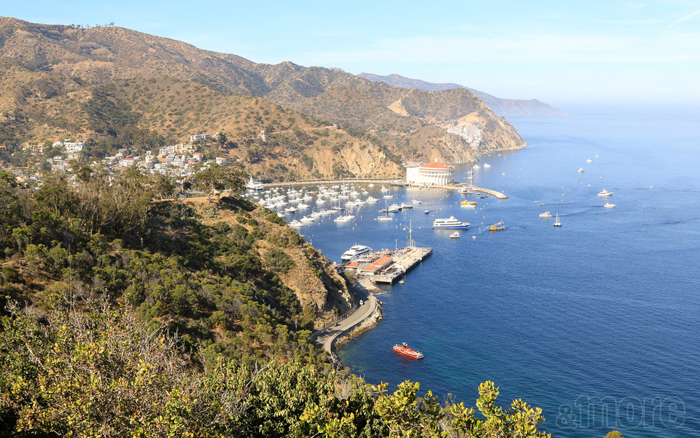 Landscape_Catalina_H.jpg
