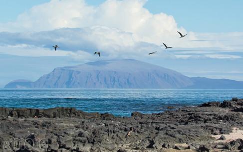 Landscape_Galapagos_H.jpg
