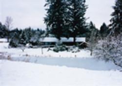 Beau Lodge in 1991