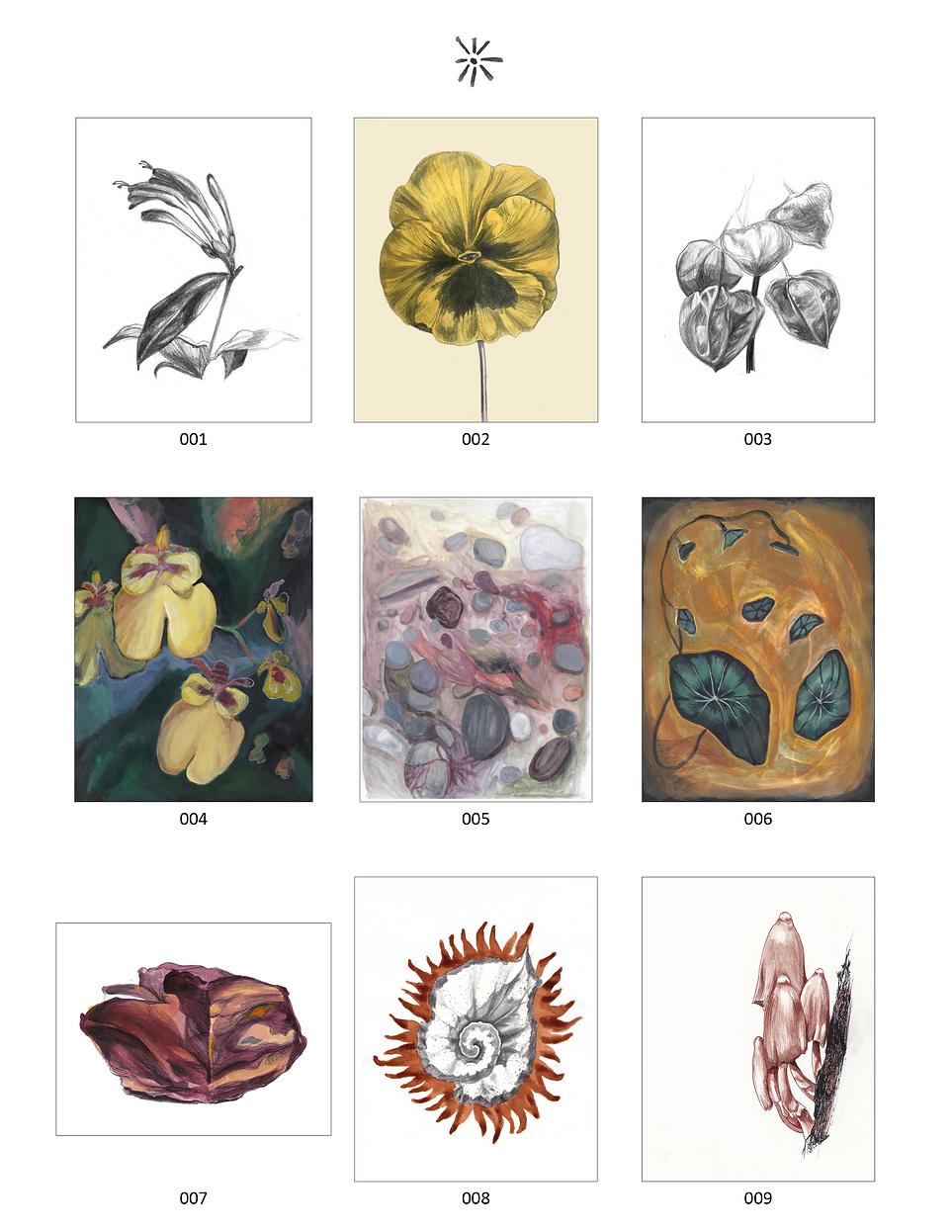 dpolselli_prints-1 copy.png
