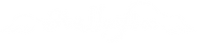 stellafia logo white.png