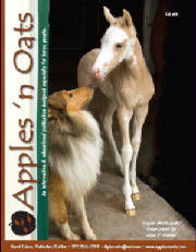 stirlingcollies - and Colt in love