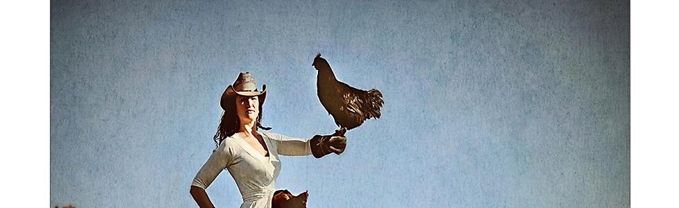the Chicken Trainer
