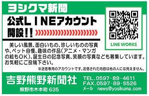 よしくま新聞ライン.jpg
