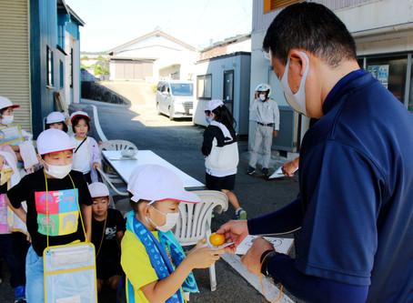御浜小2年生が町探検 柑橘事業者にインタビュー