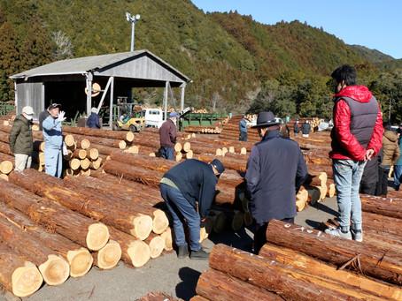 良材揃え新年スタート 熊野原木市場で初市