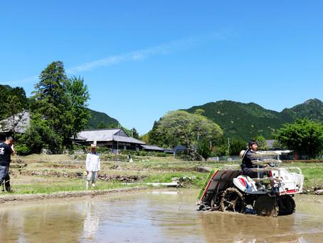 尾呂志学園  教職員が機械植えに初挑戦