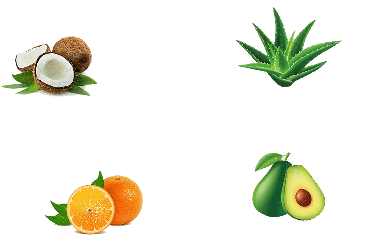 fruits-small.png