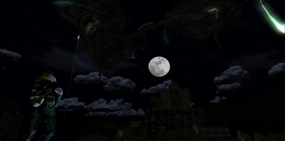 Iggy in the Night