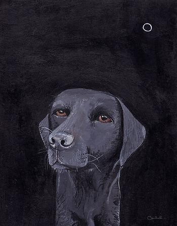 Black labrador, 18 x 24cm_edited.jpg