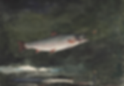 Winslow_Homer_-_Leaping_Trout_(1889)_NEW