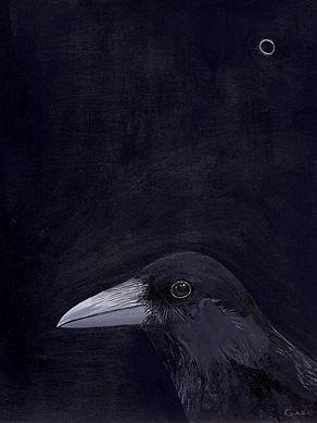 Crow at night, 18 x 24cm_edited.jpg