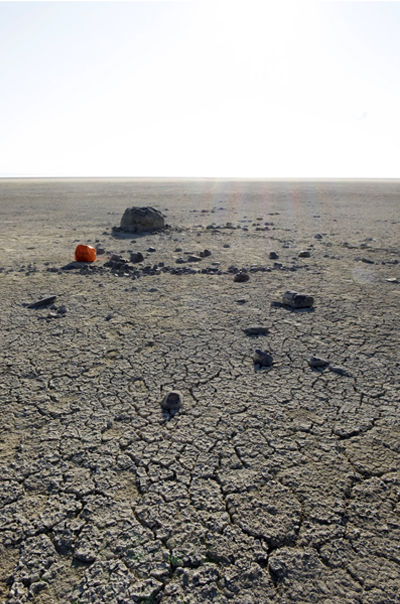 orange with rocks.jpg