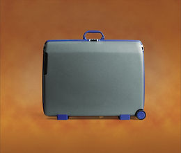 Use my surplus luggage space between Australia & NZ