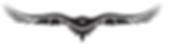 Header logo - Copy.png