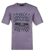 T272_HAWAII_PRINT_TEE.jpg