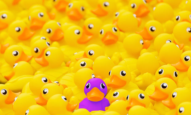 Unique purple toy duck among many yellow
