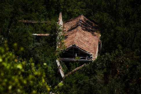 RiservaStataleValleFerriere-9934.jpg