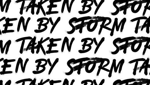 taken y storm white.jpg