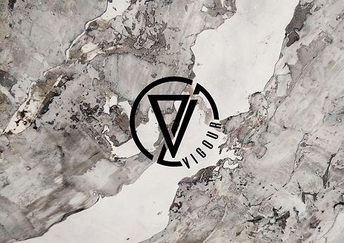 Vigour Logo Icon 9.jpg