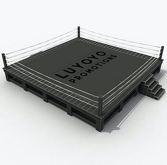 boxing%20ring%20mockup_edited.png