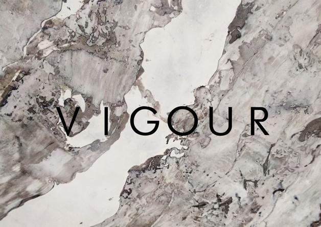 Vigour Logo 8.jpg