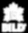 BILD logo—The Fireside Group affiliate