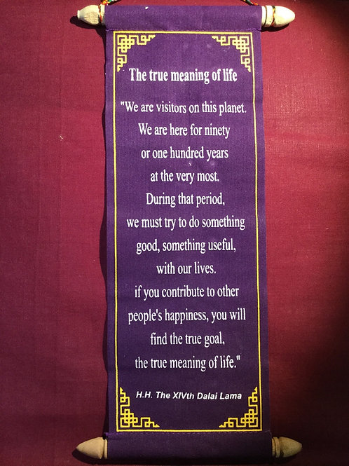 The true meaning of life banner from H.H. The XIVth Dalaï-Lama