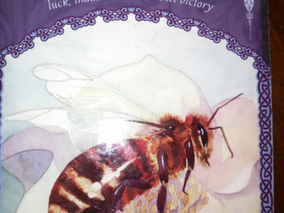 Mindful Munnday: My Sweet Honey Bee