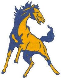 central broncho logo