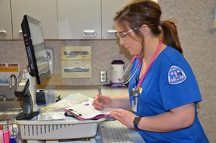 cma nurse