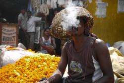 Flower market // India