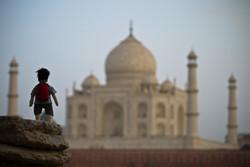 Taj Mahal / Agra // India