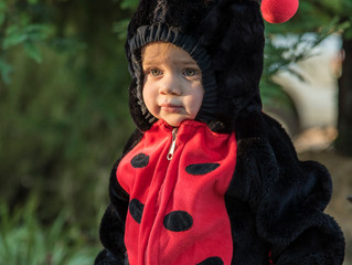 A Lady Bug goes Trick or Treating!