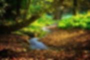 landscape-3809181_640.jpg