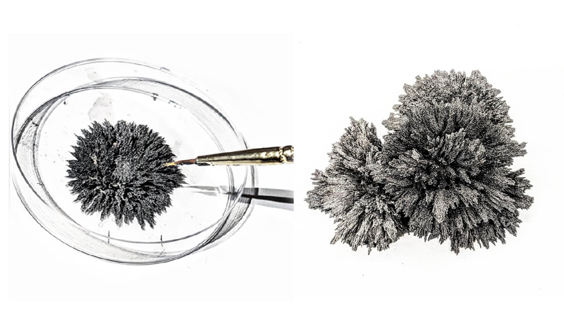 Iron + Magnets