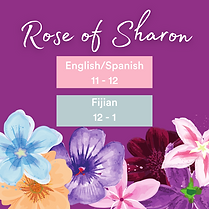 Rose of Sharon.png