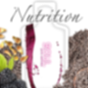 Soul Seed Nutrition