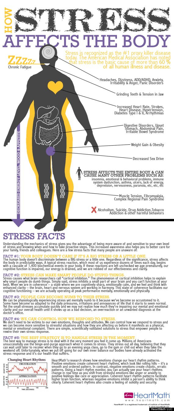 o-STRESS-INFOGRAPHIC-570.jpg