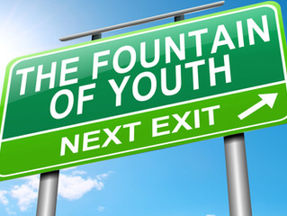 Top 8 Best Tips on How To Find the Fountain of Youth