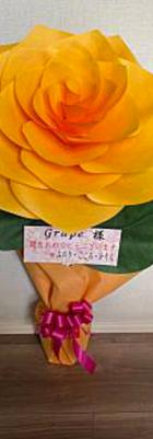 60cm ・・・・6050円(税込)