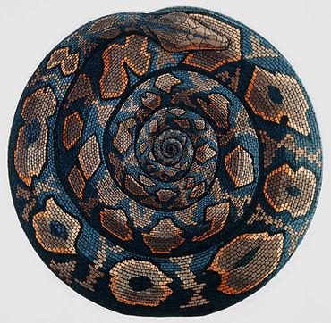 Eirian-Short.Mandala..jpg