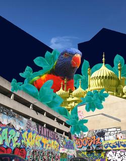 Parrot Canvas