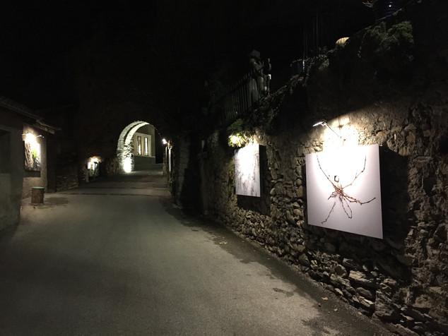 Saillon Cité d'images