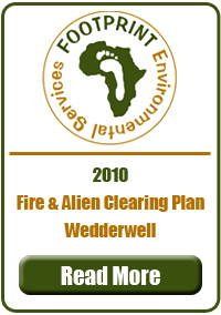 Fire & Alien Clearing Plan, Wedderwell