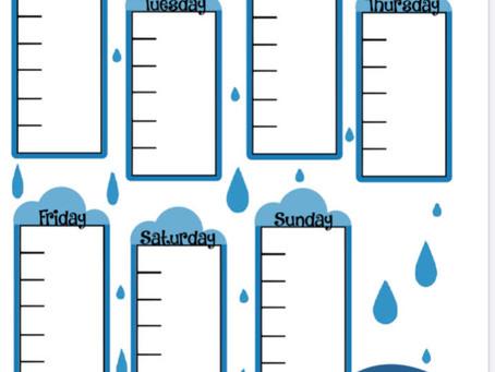 DIY Rain Gauge Fun for a Rainy Day