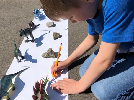 Tracing Dinosaur Shadows, A Sunny Day Activity