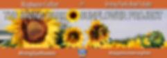 OIPA Sunflower Project 3.13.19.1130 BAnn
