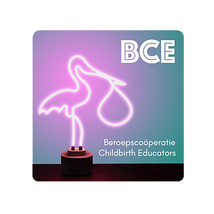 beroepscoöperatie childbirth educator Nederland